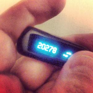 20,278 Steps.